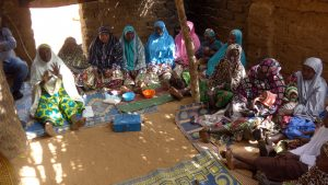 Women Driving Development in Niger