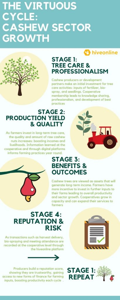 myCoop.online creates Great agricultural cooperatives 7