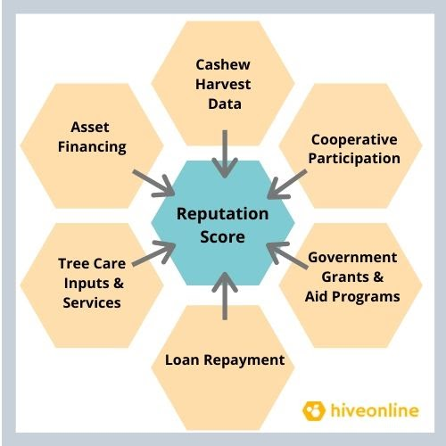 myCoop.online creates Great agricultural cooperatives 10