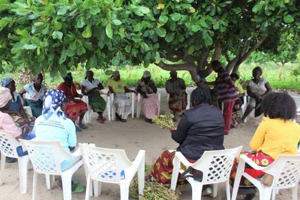 Meet AMPCM & Our Pilot Cooperatives in Mozambique 8